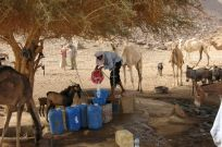 Filling up at an Aîr well