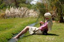 Round the back of Bilma oasis