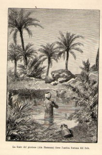fontana-del-sole