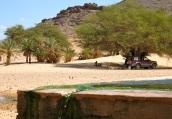 Tadjemout oasis