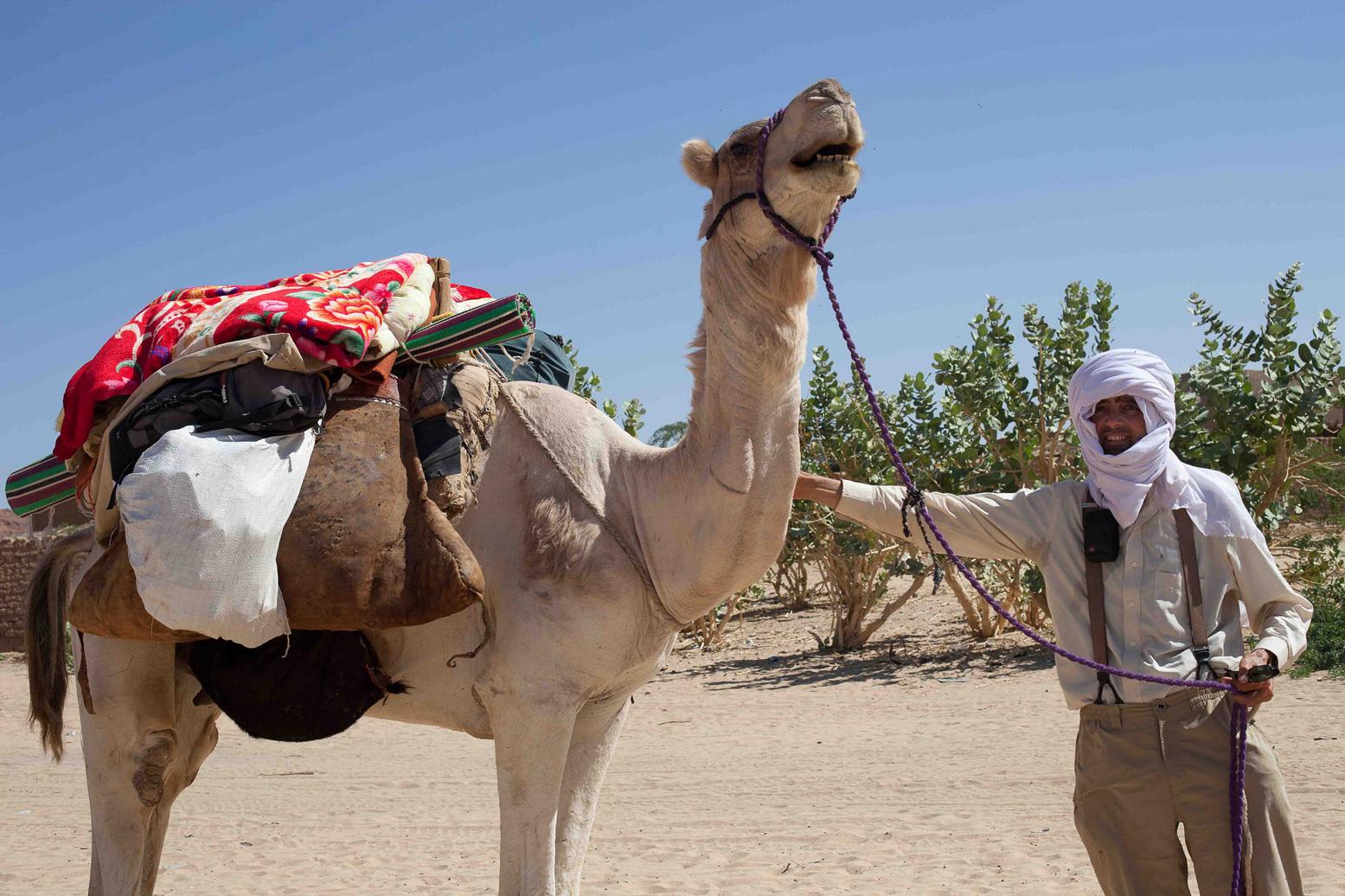 chad ennedi by camel 2011 sahara overland
